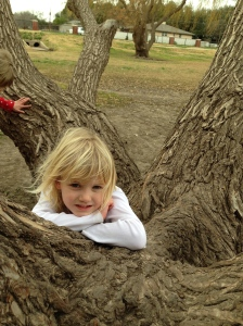 My prayer is that our daughter's roots will go as deep in Christ as this tree's roots go into the soil.