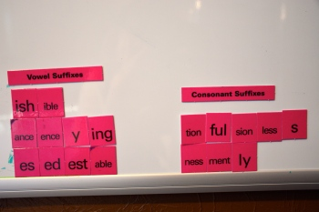 Consonant and Vowel Suffixes
